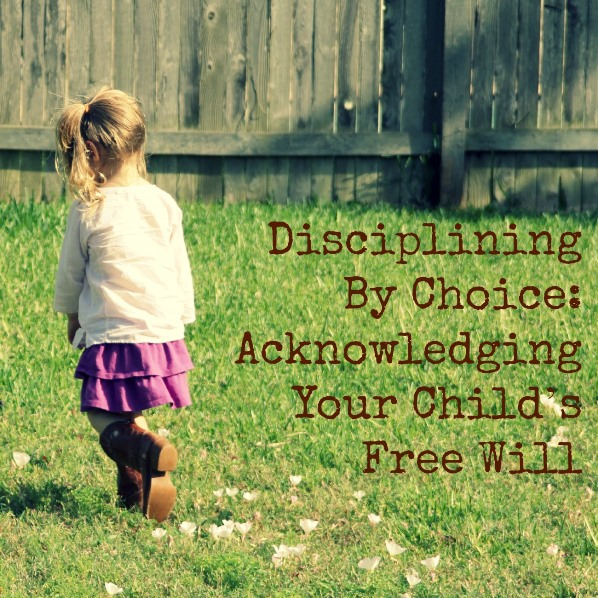 Disciplining By Choice - Acknowledging Your Child's Free Will